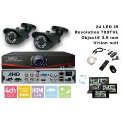 Kit videosurveillance  DVR 4 sorties  + 2 Cameras WP-500B + 2x 20m cable BNC + 1 adaptateur 4en1 + 1 alimentation 5A